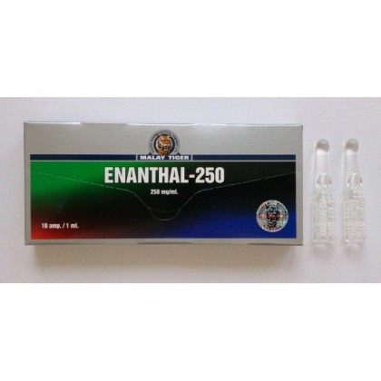 Enanthate 250 Malay Tiger (1 amp)